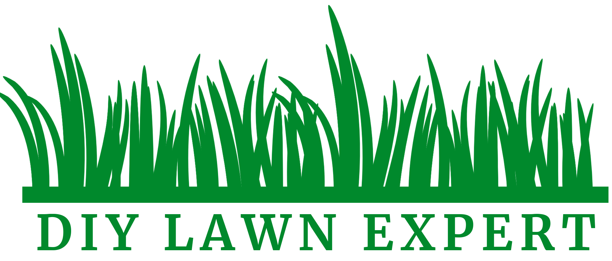 Real world tips and information about lawn care written by a real person who loves having a great lawn.