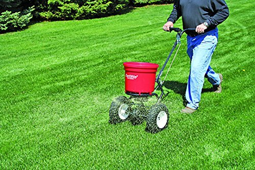 How To Fertilize Your Lawn Effectively And Responsibly Diy