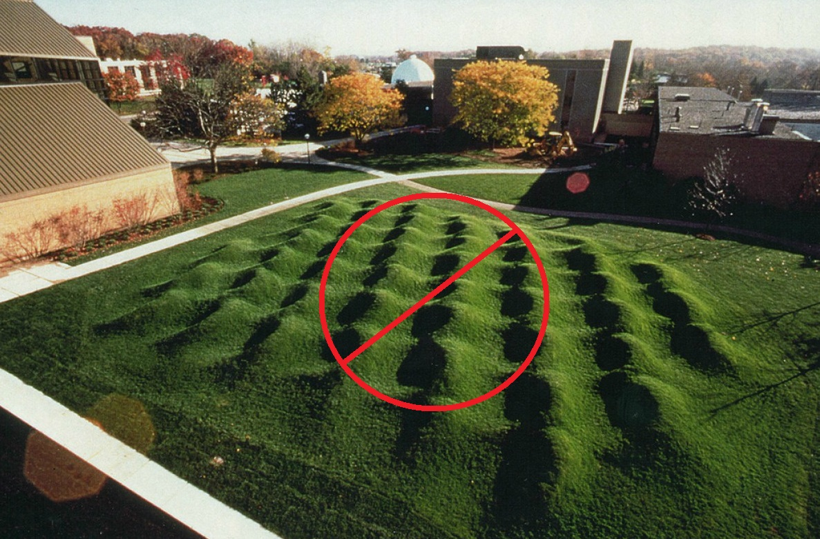 How to Level a Bumpy Lawn - DIY LAWN EXPERT